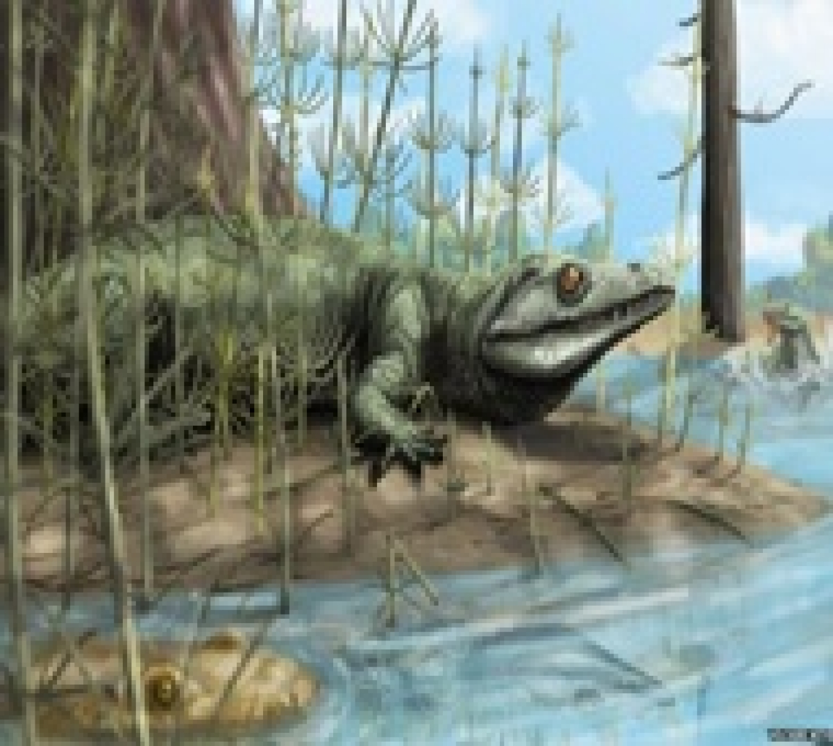 New reptile species was one of the largest ever flying animals