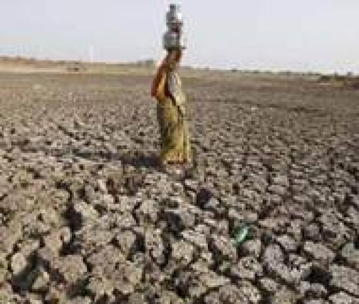 Experts warns Marathwada heading towards 'desertification'
