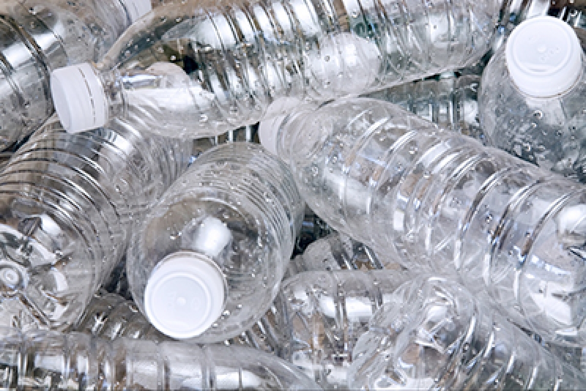 Indian scientists discover plastic-eating bacteria