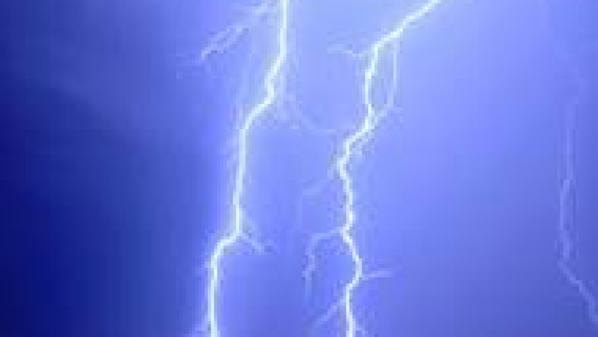 Over 200 sheep, goats killed by lightning in J&K