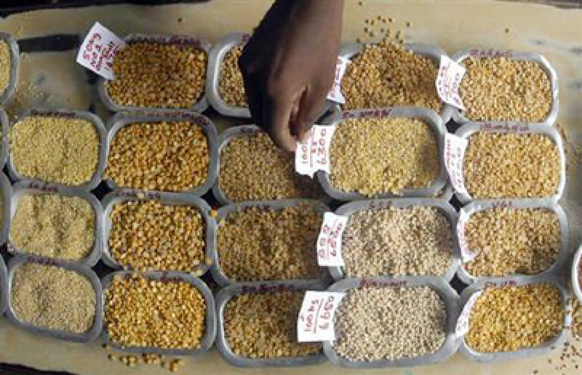 Government taking measures to control prices of pulses