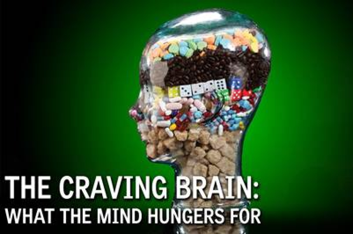 The mind and the diet plan