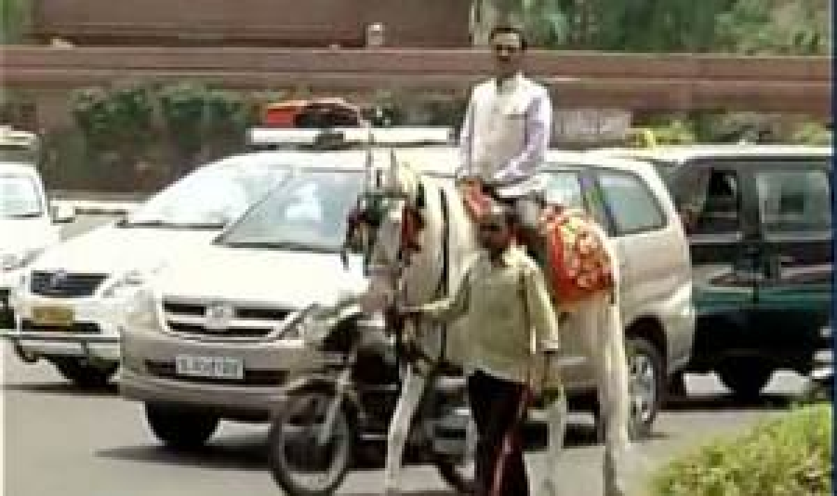 Odd-Even: Cycle, horse the new modes of transport in India
