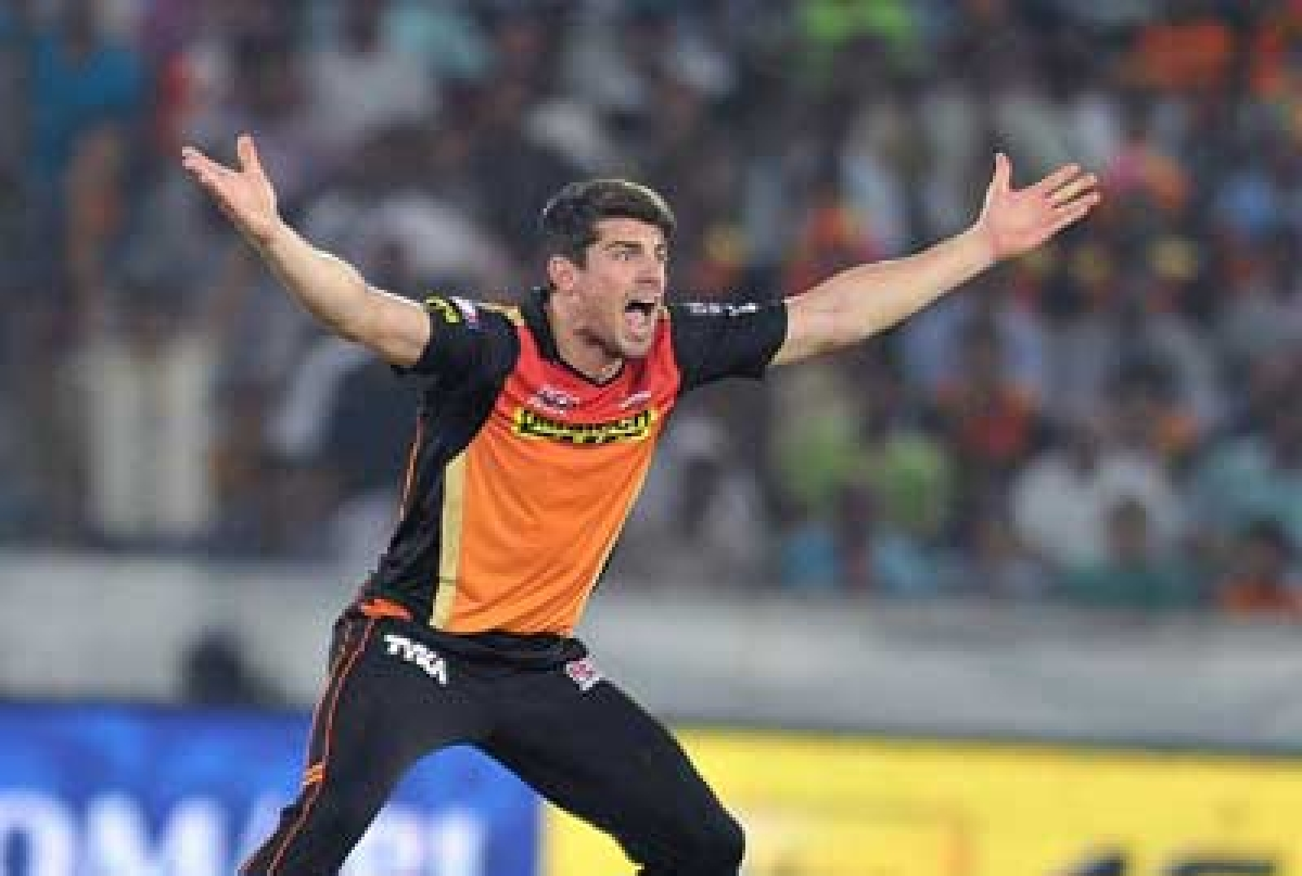 Not this time! Hyderabad bowlers fail to defend 146