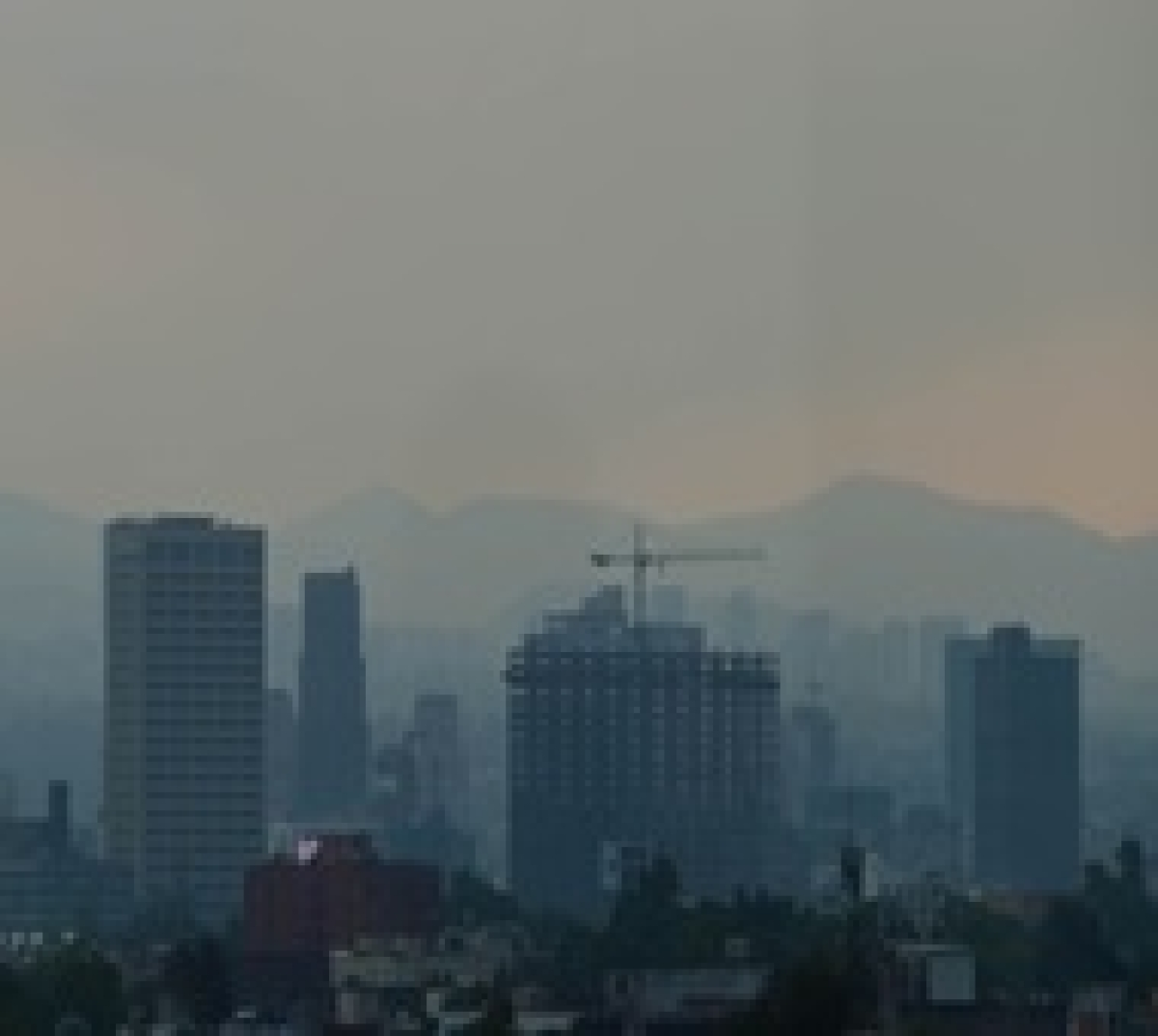 Mumbai: Bad air day for city on Wednesday