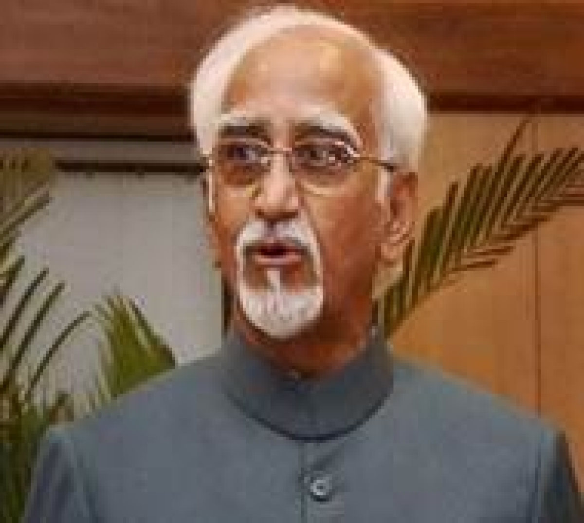 Africans are 'our guests', attacks on them 'despicable': Ansari
