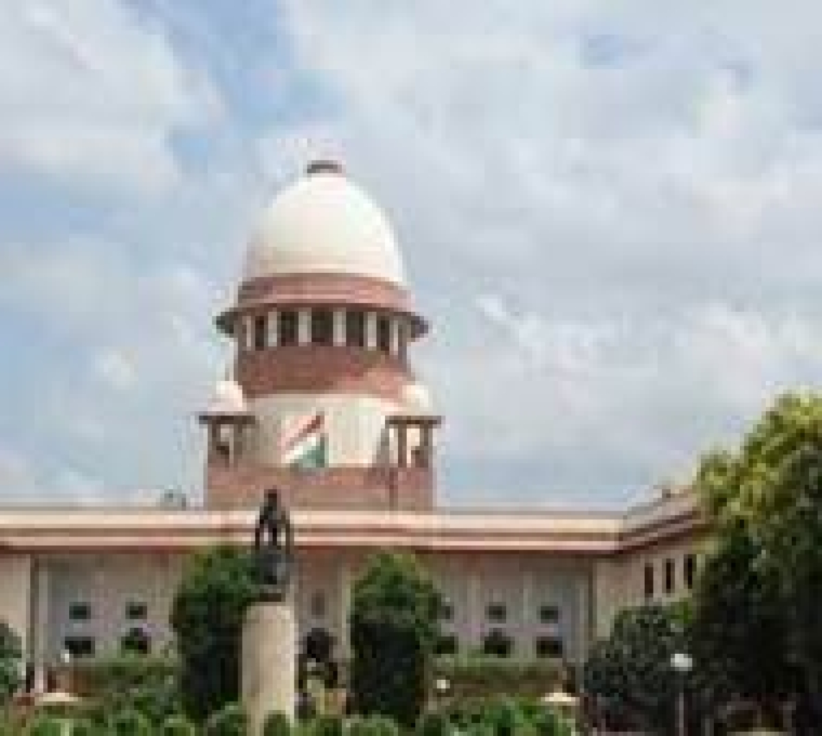 SC to hear challenge to culling of animals