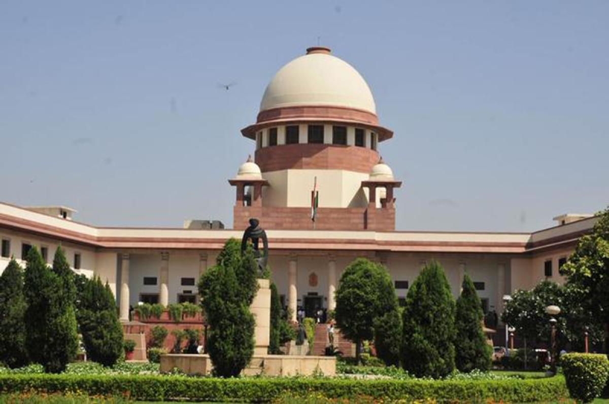 Rape 'survivor' can abort foetus, says Supreme Court