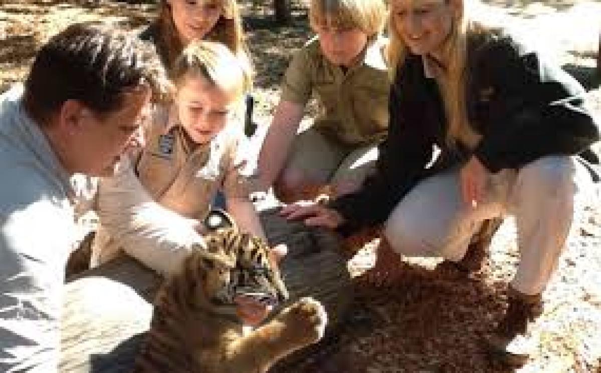 Australian girl donates inheritance to save tigers