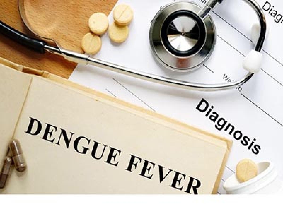 15 dead, 15,000 infected by dengue in Sri Lanka