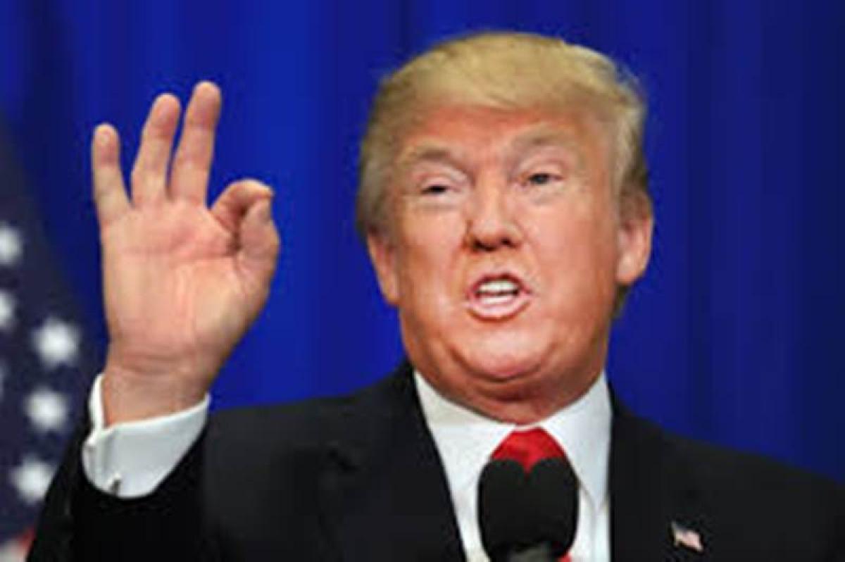 Need an attack dog as running mate: Trump
