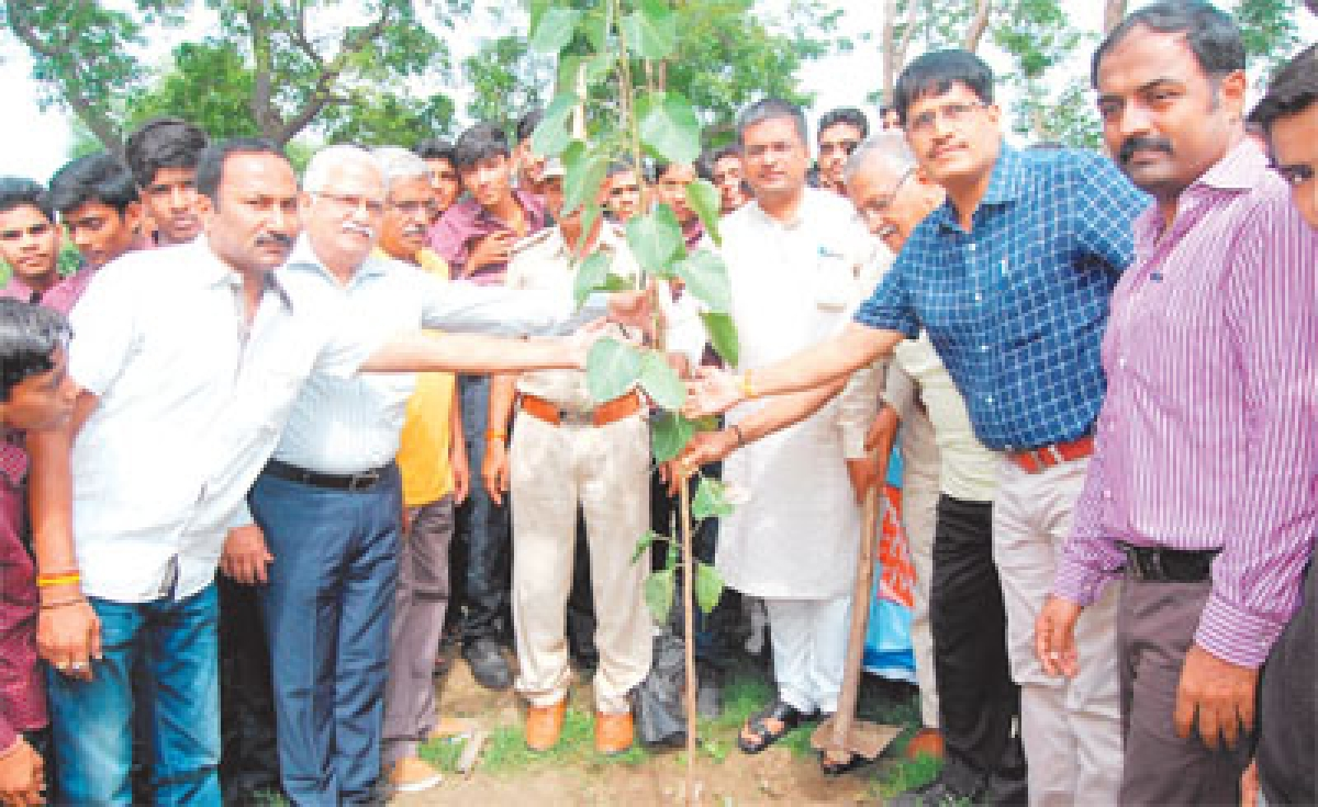 Kshipra banks to clad layers of lush green trees: Collector