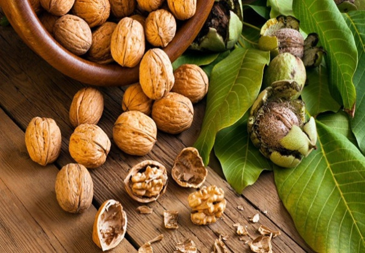 Eating walnuts may help fight breast cancer: Study