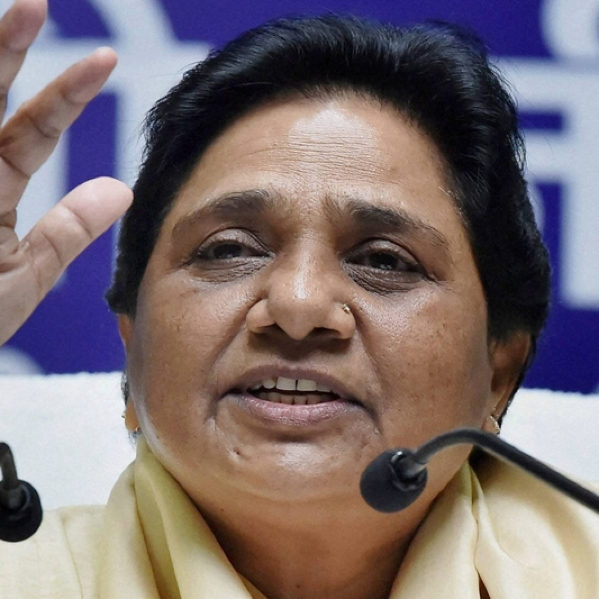 Incidents of crime on communal, caste lines in BJP-ruled states defaming country: BSP president Mayawati