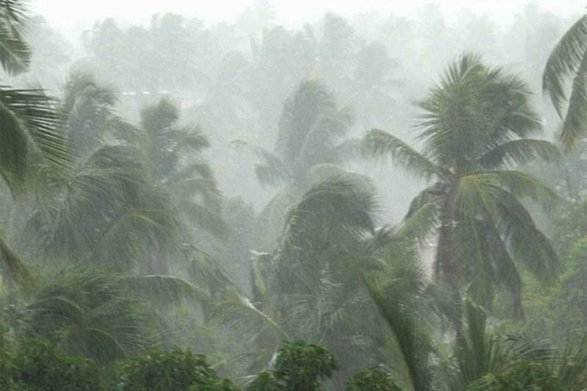 No heavy rains in Mumbai for next five days: IMD