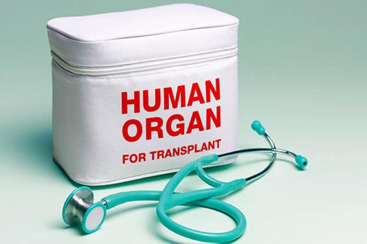 Maha govt to soon finalise SOPs for organ transplant