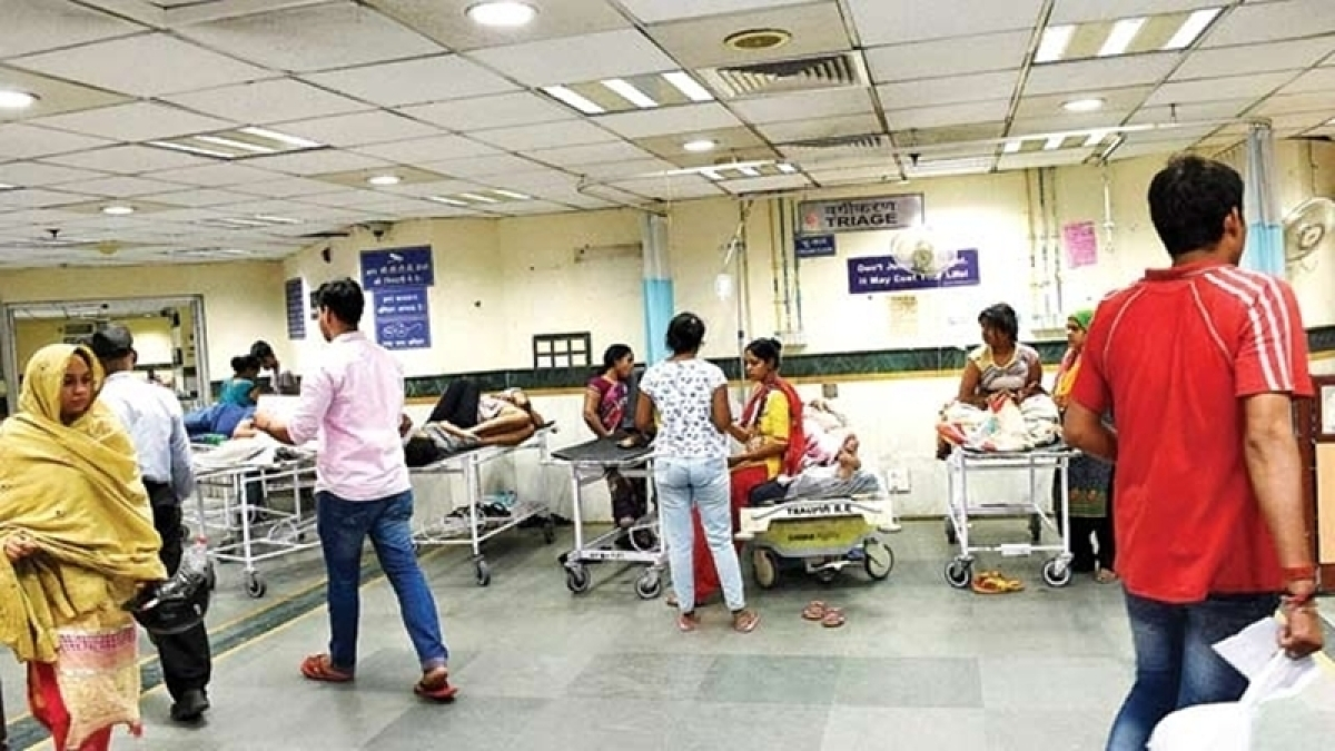 Chikungunya toll rises to six in Delhi