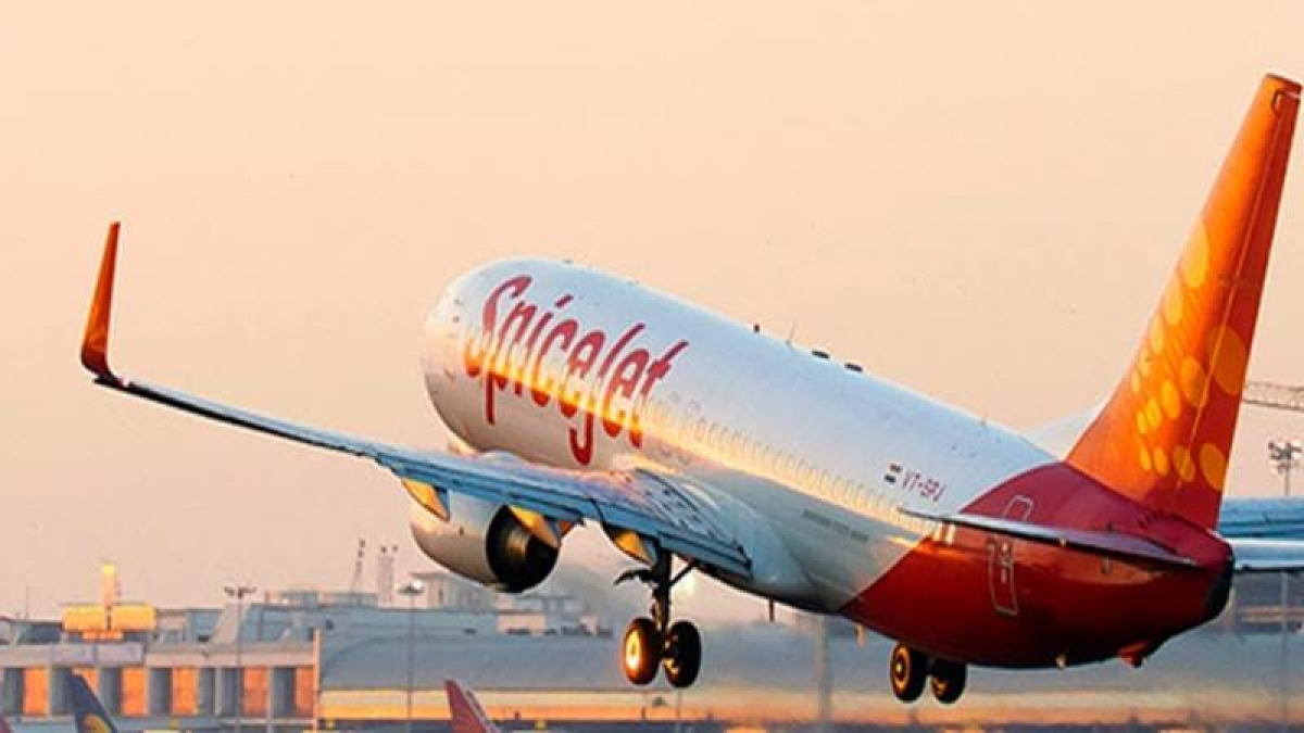 SpiceJet to launch 20 domestic flights in March