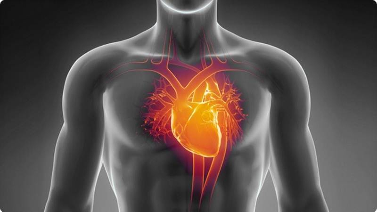 Diabetes may independently lead to heart failure