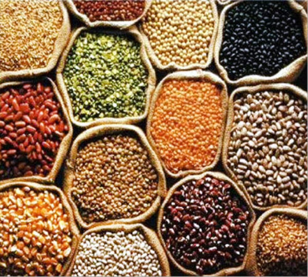 Central government to use India Post for pulses distribution