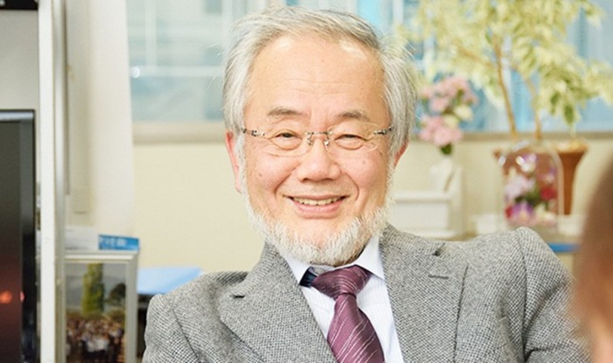 Japan's Ohsumi wins Nobel Medicine Prize for cell 'recycling'