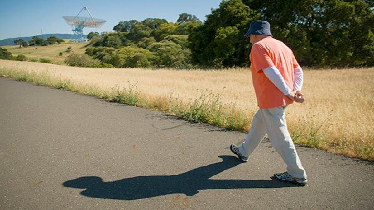 Spirited Walking — Wendy Bumgardner