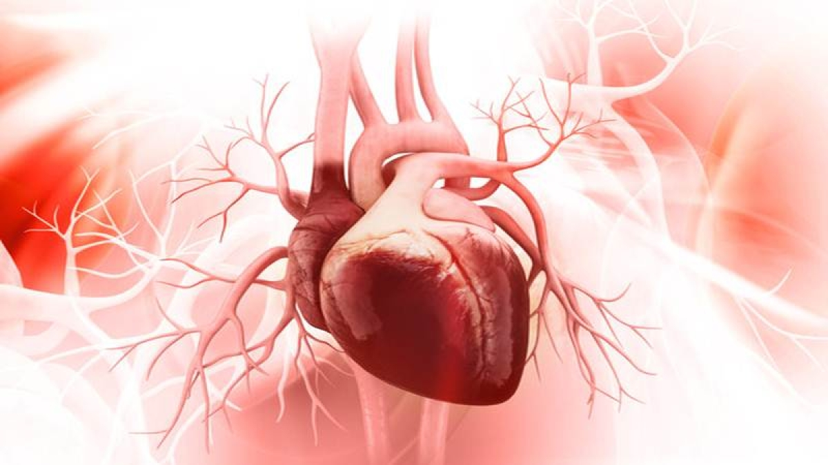 Mumbai: Suffering from narrowing of valves? Get treated without cardiac surgery
