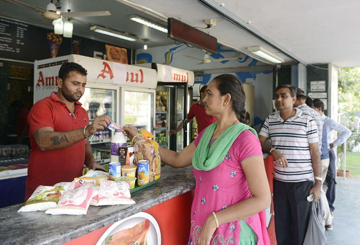 Mumbai: Government seeks bigwigs' help to boost revenue in dairy products