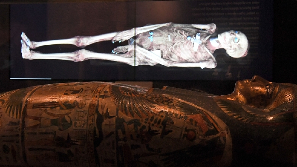 Pharaonic mummies hall at new Cairo museum opens to visitors
