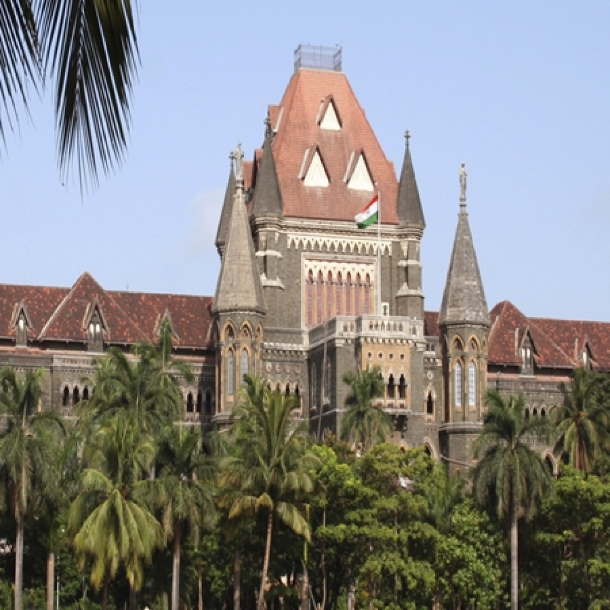 FPJ Legal: Bombay HC seeks to know Maharashtra Government's protocol to treat mucormycosis