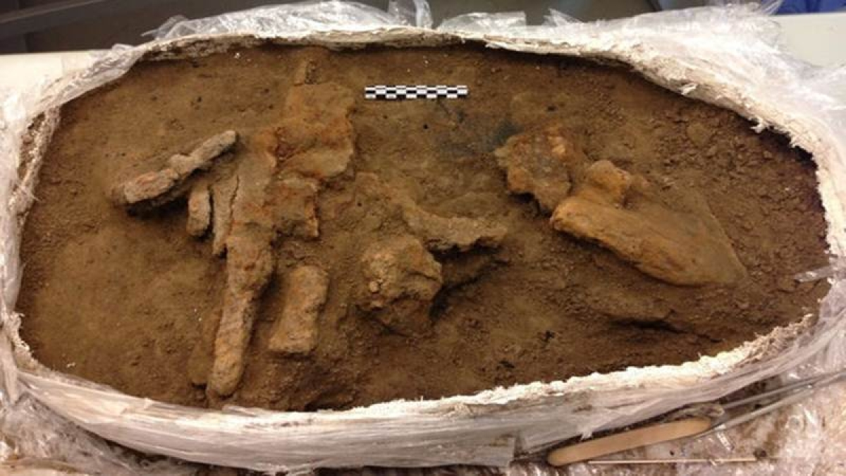 1,000-year-old Viking toolbox found in mysterious fortress