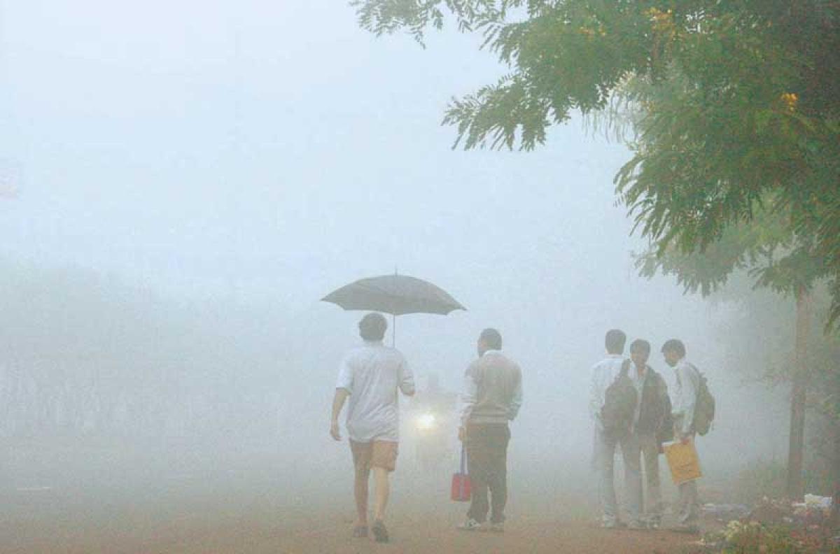 Indore: Cold wave, fog grip city