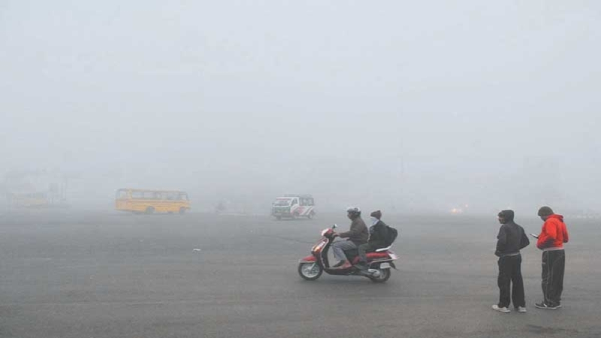Indore: City shivers under cold wave