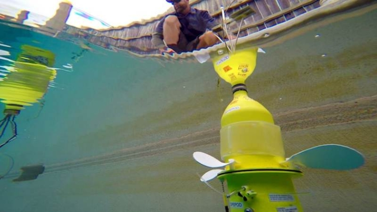 Group of tiny underwater robots will study ocean life
