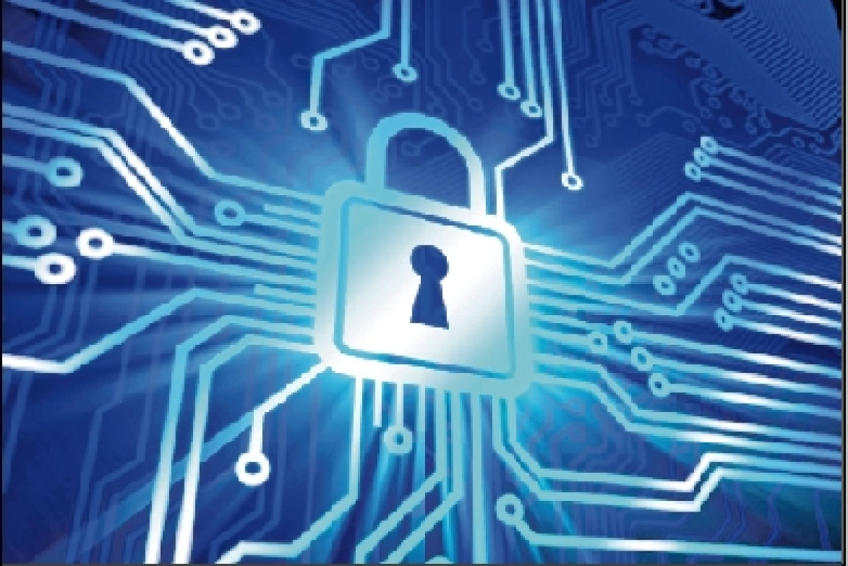 Fraud and security concerns deter foreign firms from setting shop