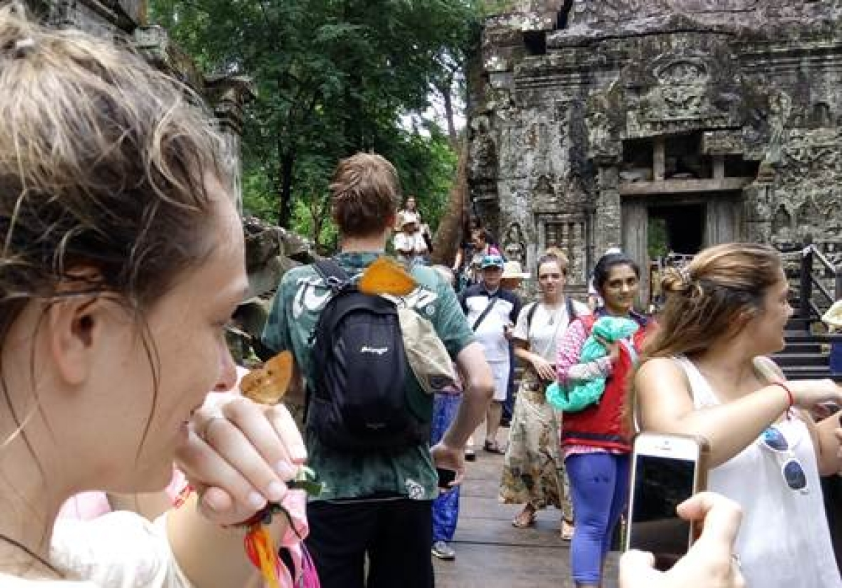 Butterflies, nature and ancient ruins