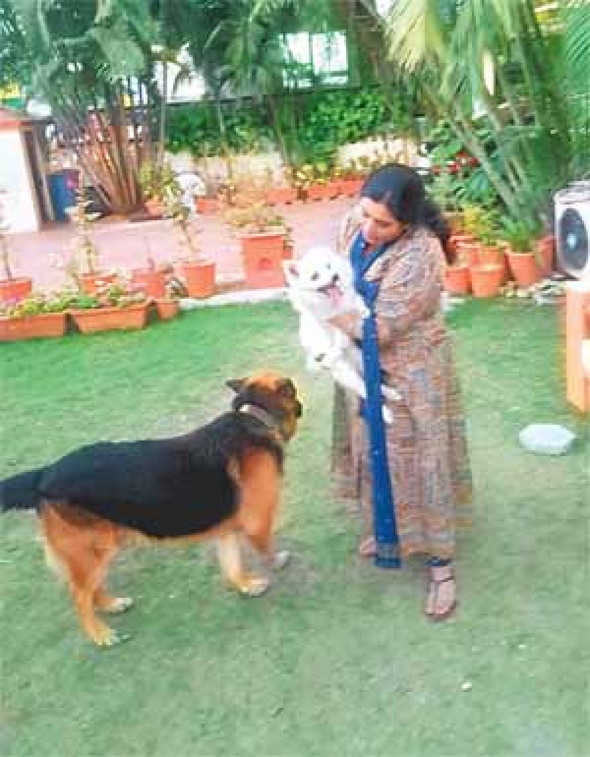 Indore: From parrot talk to rescuing animals, Divya Gupta plays angel for them