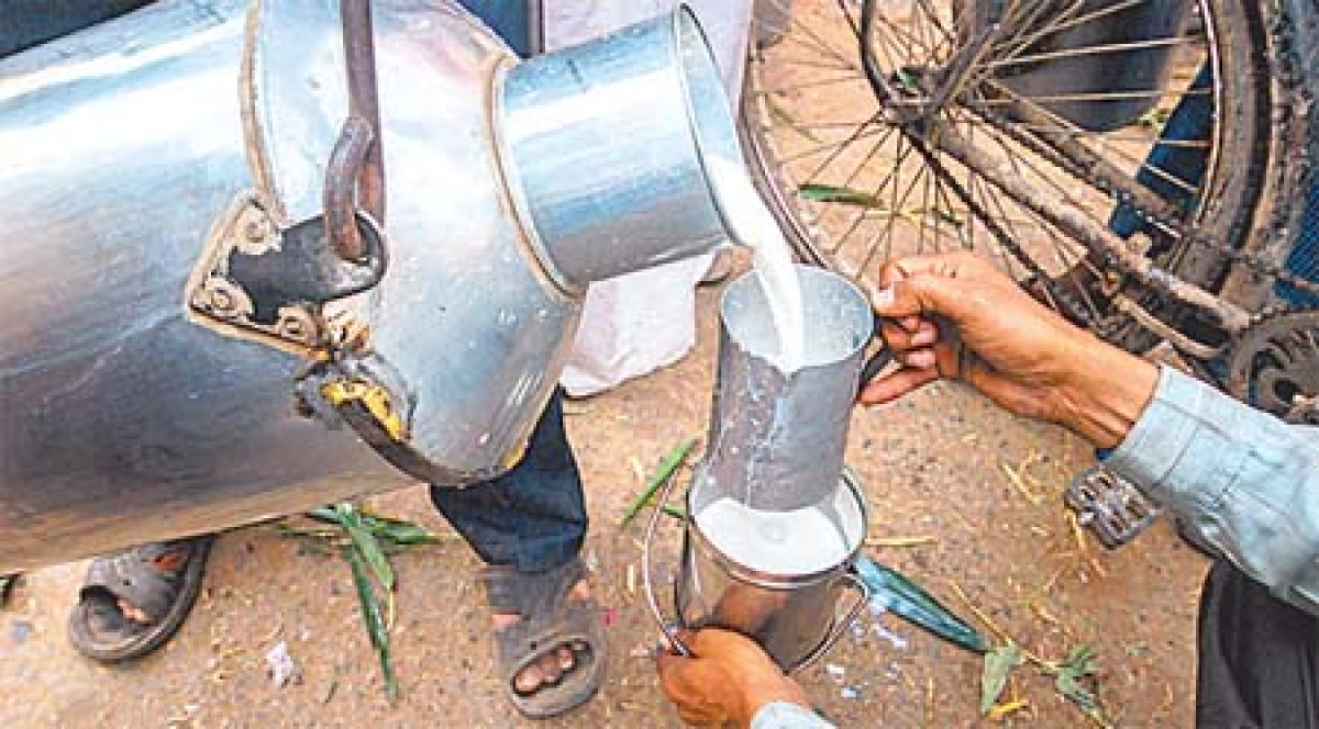 Indore: Shell Rs 2 more for milk from today
