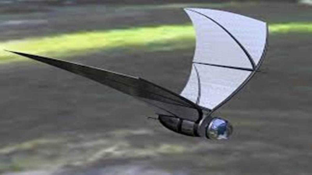New bat-inspired flying robot developed