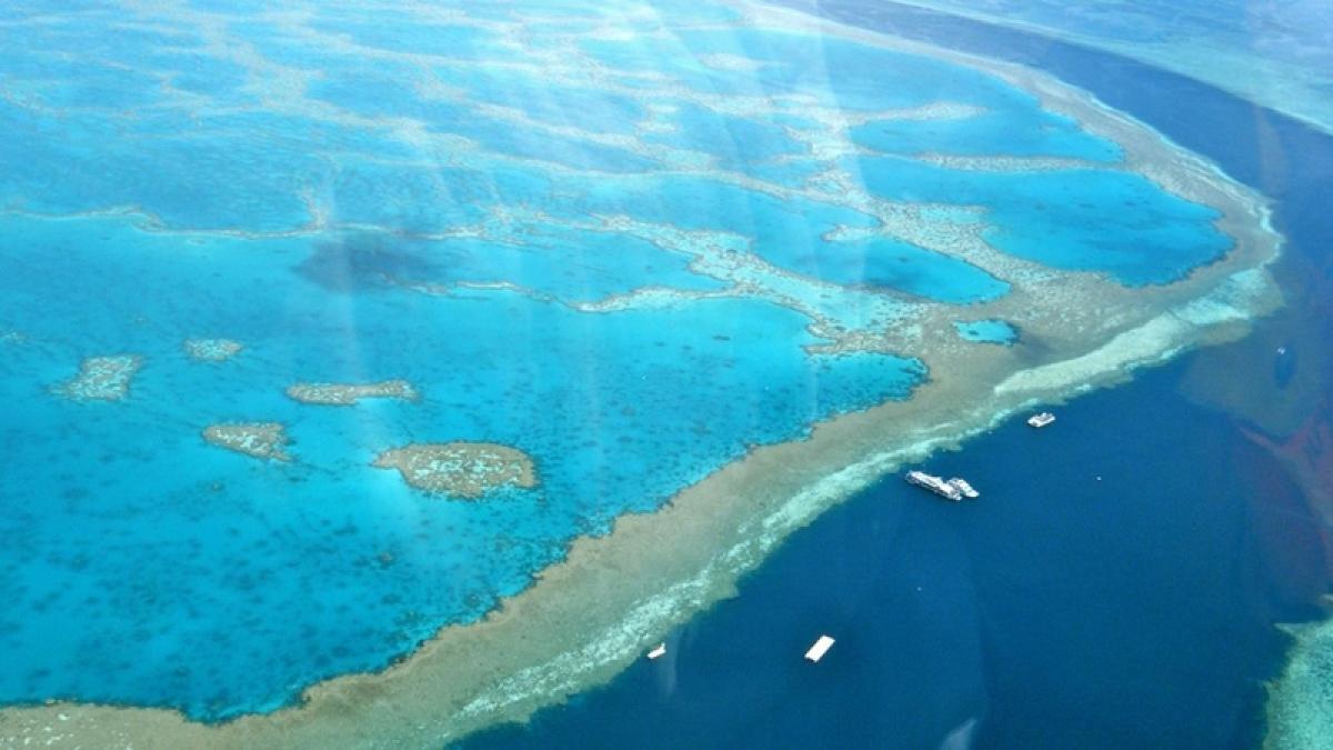 Remains of huge undersea landslide  found on Great Barrier Reef