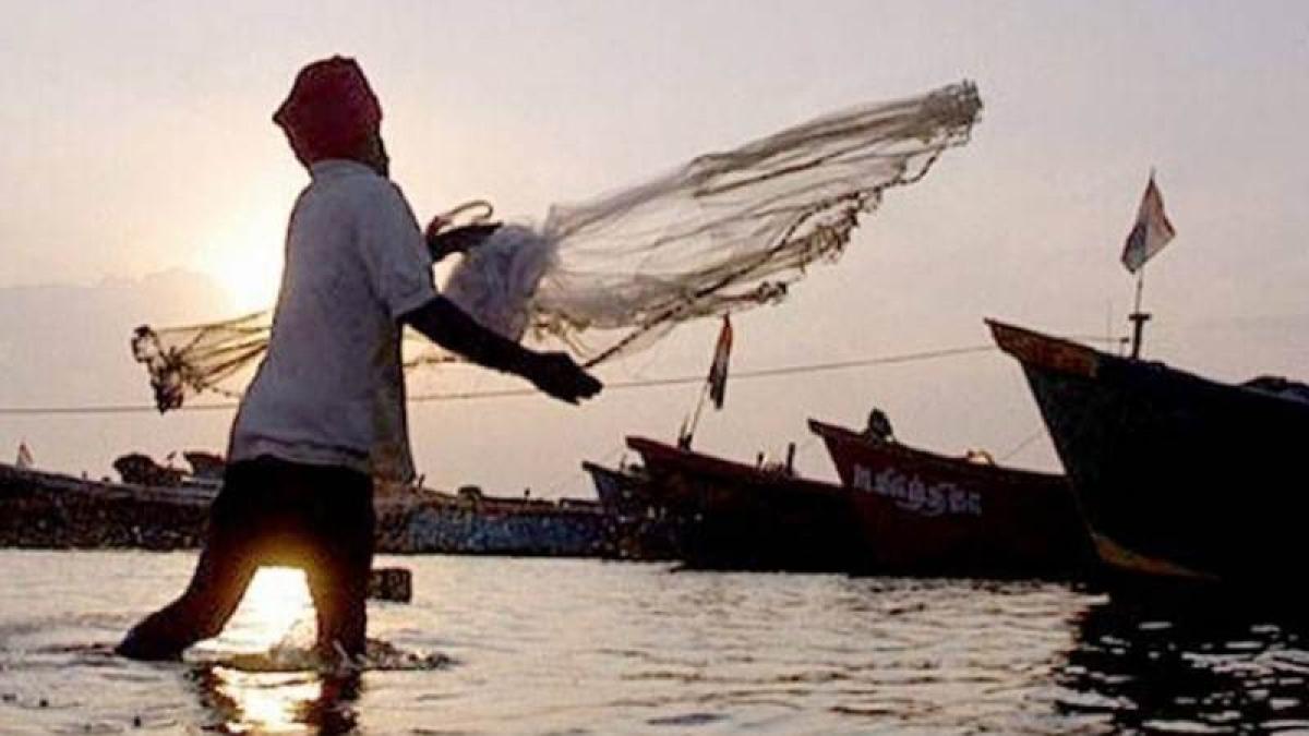 53 Indian fishermen released from Sri Lankan jail
