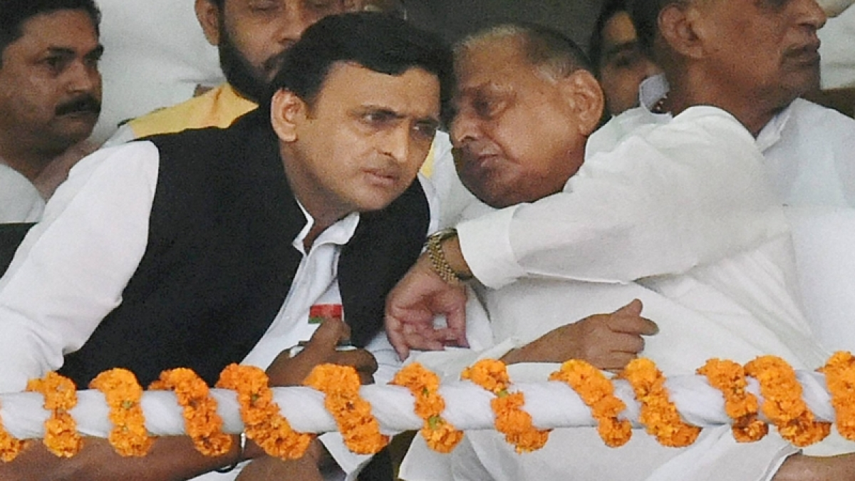 Lok Sabha elections 2019: Akhilesh Yadav to contest from Kannauj, Mulayam from Mainpuri