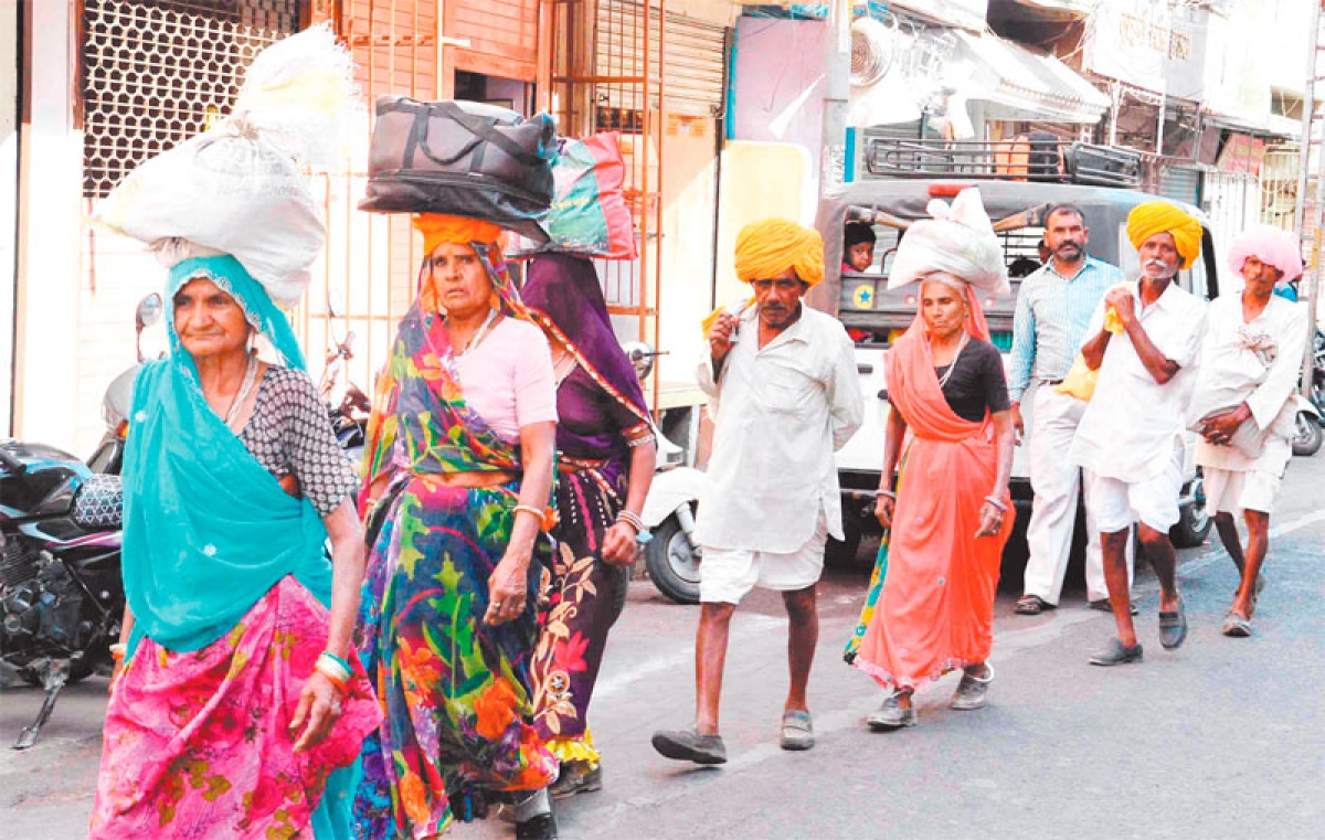 Ujjain: Panchkroshi yatra begins from Friday