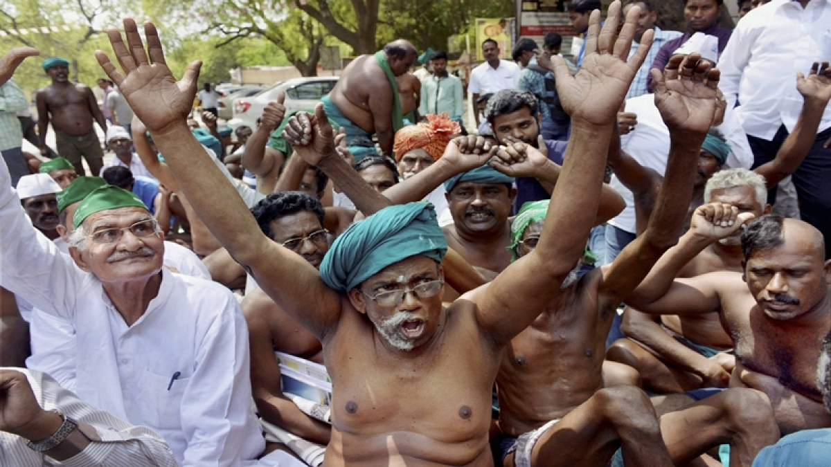 Waive loans of all drought affected farmers: Madras HC to Tamil Nadu govt