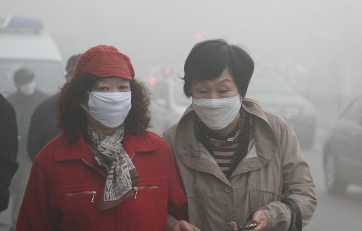 Toxic vehicles behind smog-causing ammonia