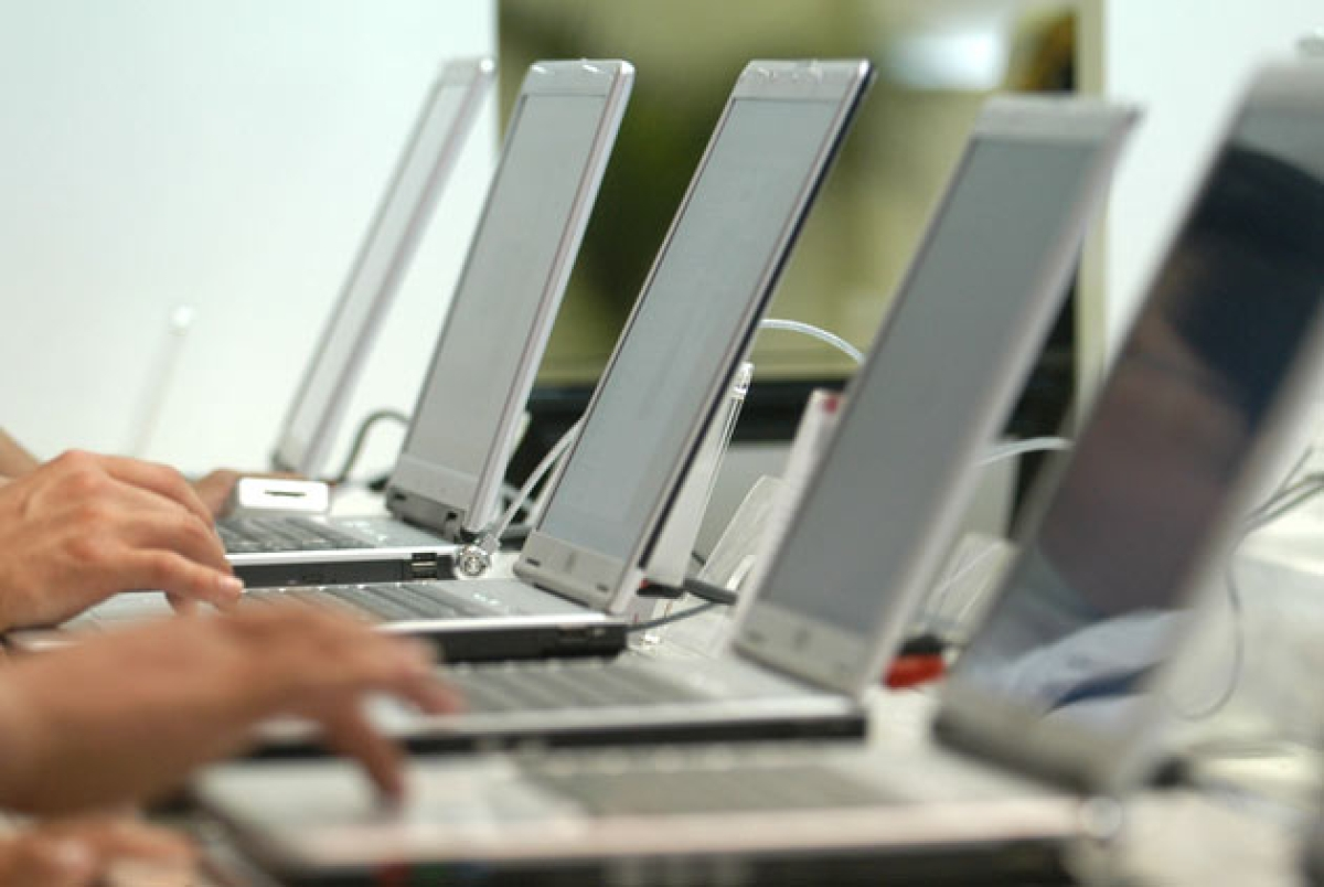 Domestic opportunity can help IT companies tide over job losses: ASSOCHAM