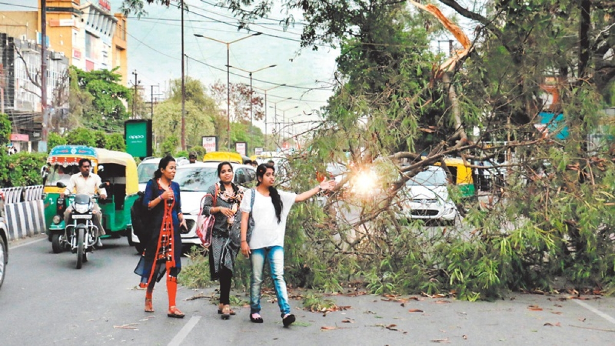 Indore: Drizzle, gusty winds bring relief from scorching heat