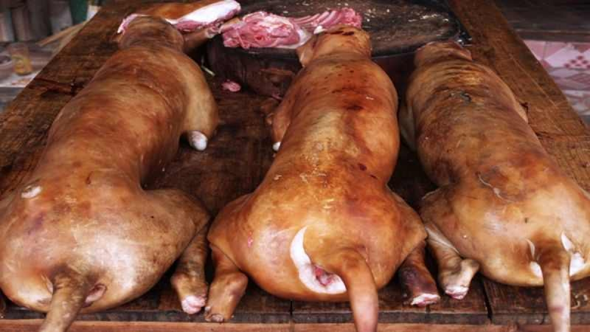 Shocking! Meat of pet dog consumed after kidnapping