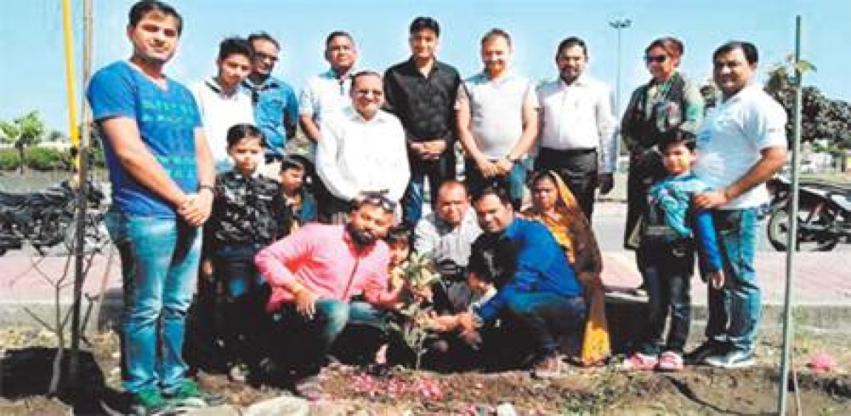 Indore: This associate prof plants trees  on people's birthday, anniversaries to make it memorable