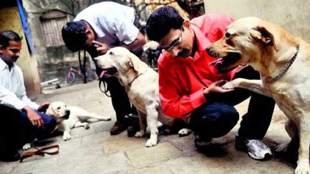 Zanjeer: Sniffer dog who saved countless lives during 1993 Mumbai serial blasts